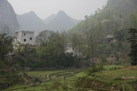 China 12 (415)